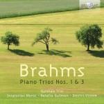 Gutman Trio - Johannes Brahms: Piano Trios Nos. 1 & 3