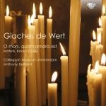 Collegium Musicum Amsterdam, Anthony Zielhorst – Giaches De Wert: O mors, quam amara est – Motets, Book 1 (1566)