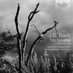 Mario Folena & Roberto Loreggian – Johann Sebastian Bach: Trio Sonatas